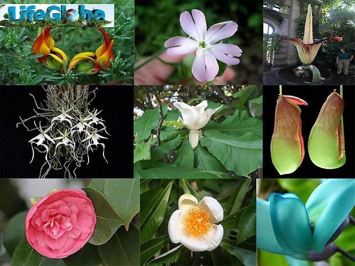 Mature british woman naked